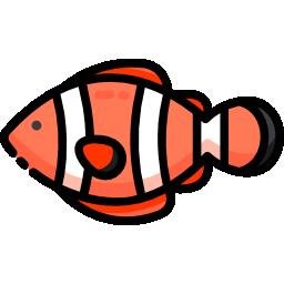 clown-fish-icon