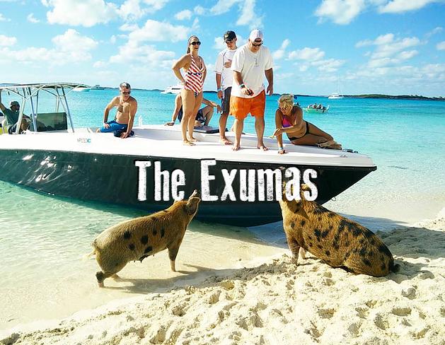 the_exumas_experts