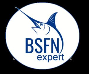 bsfn_expert_logo
